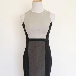Ann Taylor Dress Black Colorblock Work Sheath 00p